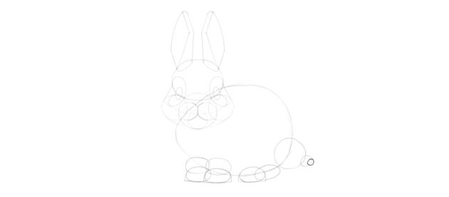 bunny tail tip