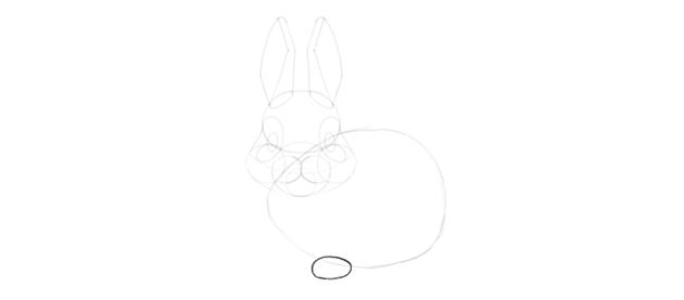 bunny paw shape