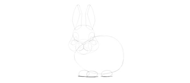 bunny paws fluffy