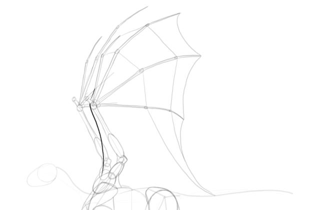 dragon front membrane