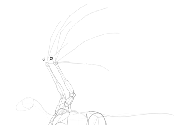 dragon wing claw