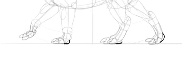 dragon feet pads