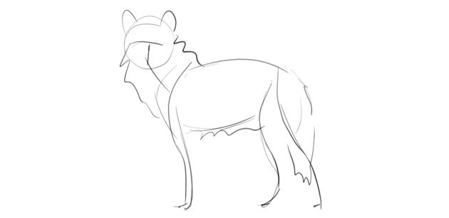 wolf basic sketch