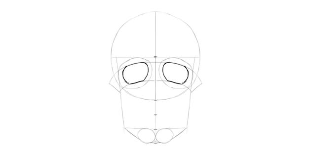 human skull eye sockets shape