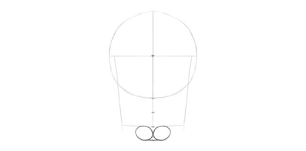 human skull chin shape