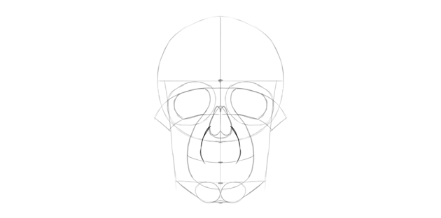human skull upper mouth area