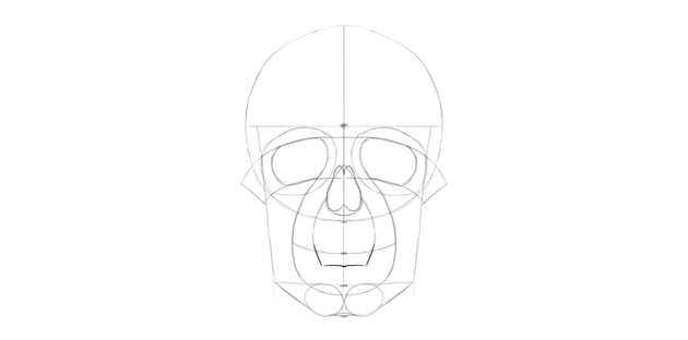 human skull lower mouth area