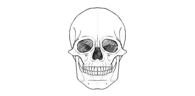 human skull eyes shaded