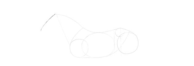 horse drawing head length