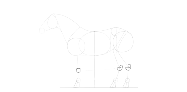 horse drawing joints shape