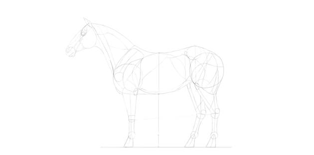 horse drawing muscular neck
