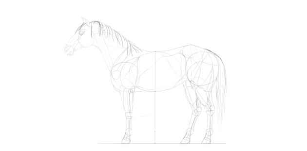horse drawing hair outline