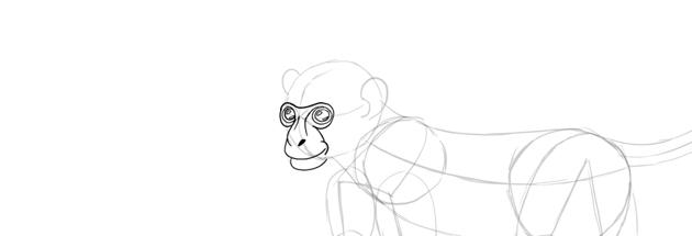 monkey drawing eyes shine dots