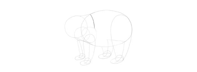 panda drawing shoulder line