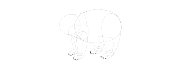 panda drawing claws lines