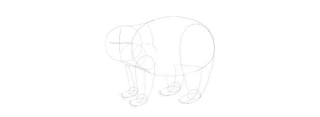 panda drawing face cross
