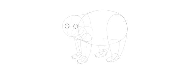 panda drawing eyes base