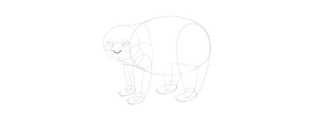 panda drawing nose bottom