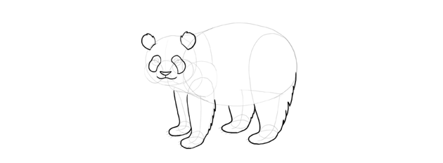 panda drawing fluffy ears