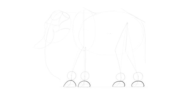 elephant feet shape