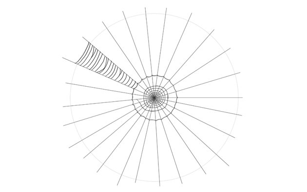 spider web drawing first section