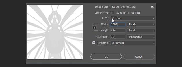 photoshop how to resize image