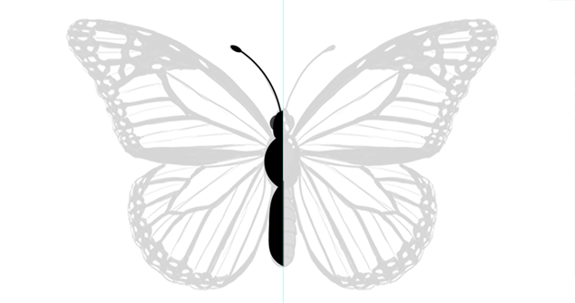 photoshop vector butterfly antenna