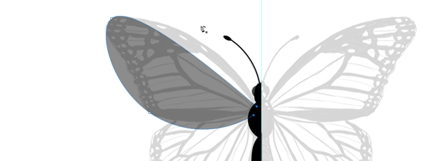 photoshop create vector butterfly wing