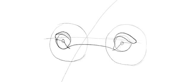 lion upper eyelids drawing