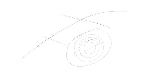 lizard upper eyelid drawing