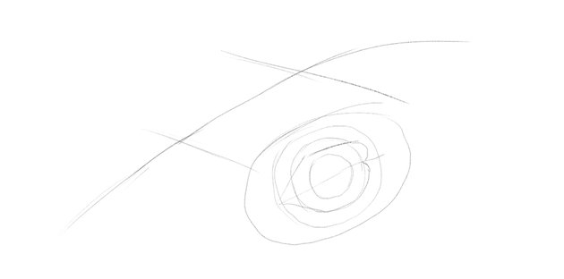 lizard lower eyelid drawing