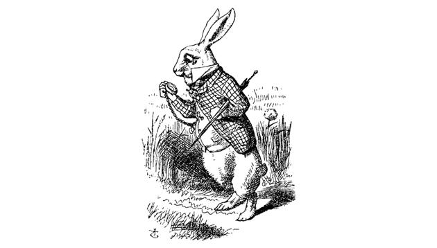 anthro rabbit alice in wonderland
