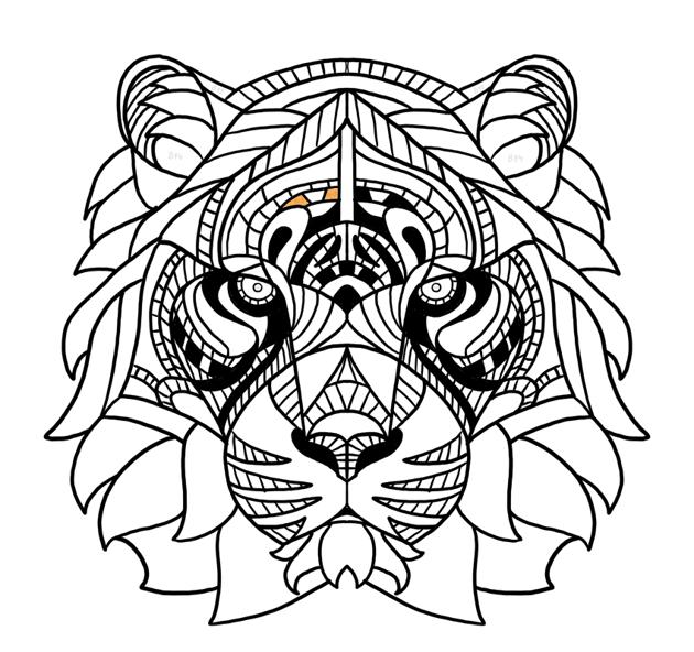 tiger pattern above eyebrows