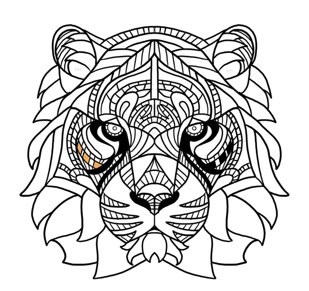 tiger pattern on face