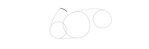draw the shoudler blade