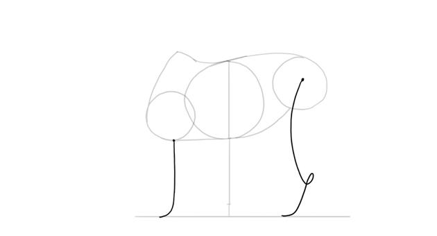 draw symbolic legs