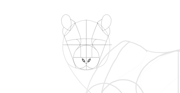 draw the nose holes