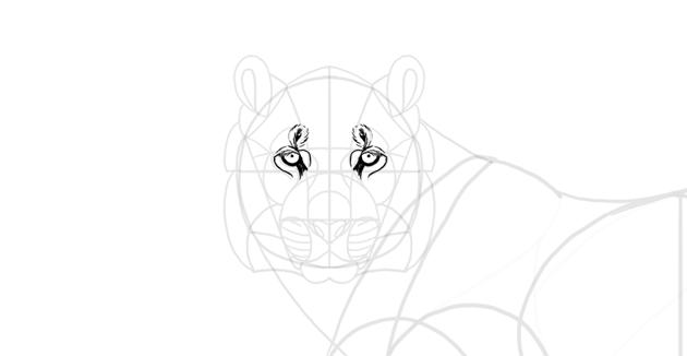 draw details around eyes
