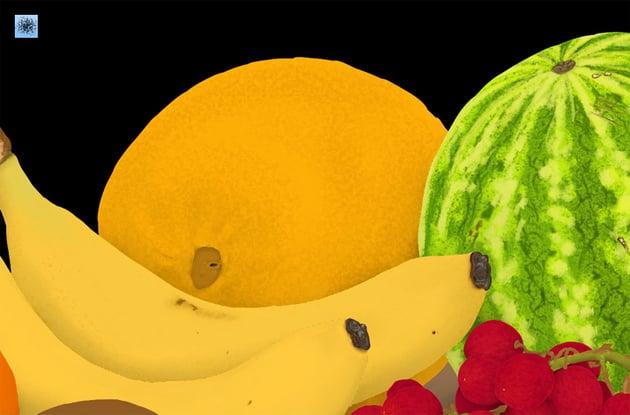melon surface