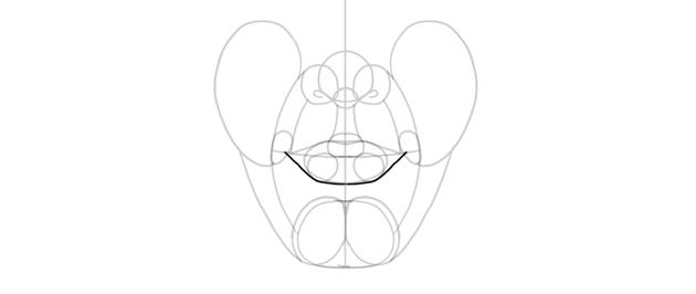 lower lip outline