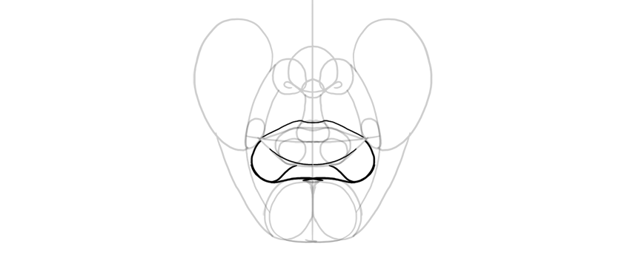 whole lip outline