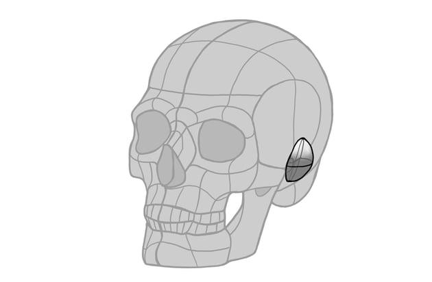 ear simple dome