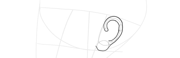 ear side view helix outline