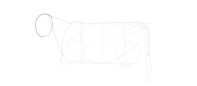 draw cow head oval