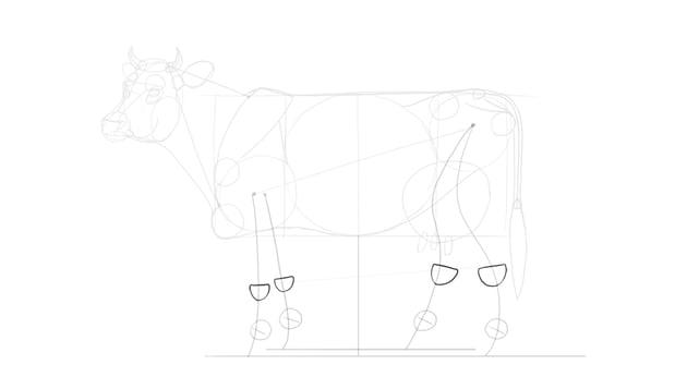 sketch leg joints