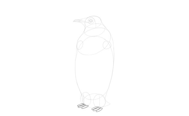 sketch feet volume