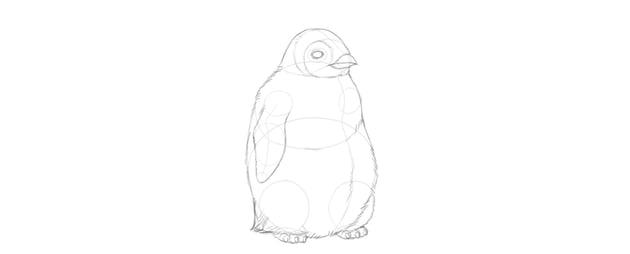 outline baby penguin