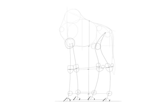 outline hooves