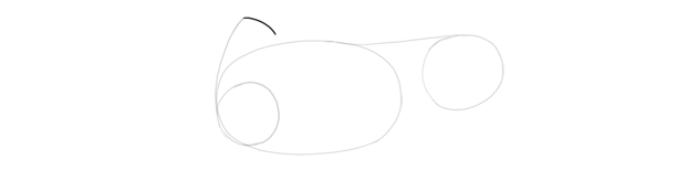 draw top of shoulder blade
