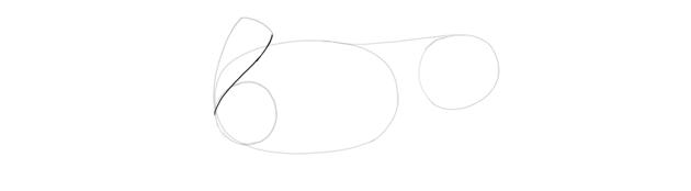 outline shoulder